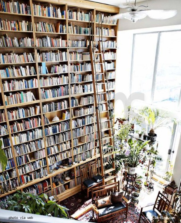 01_libreria cielo terra