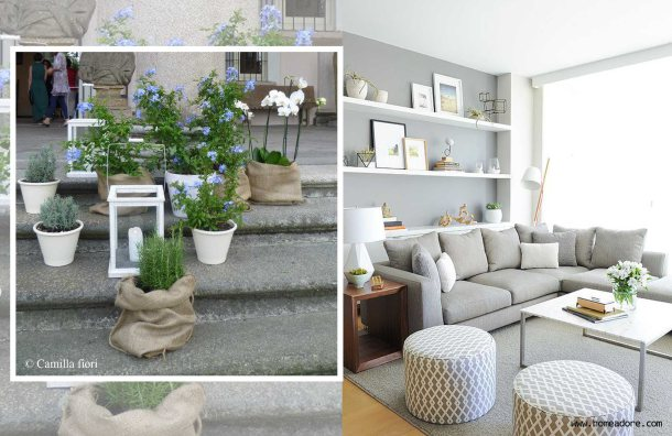 grigio-living room