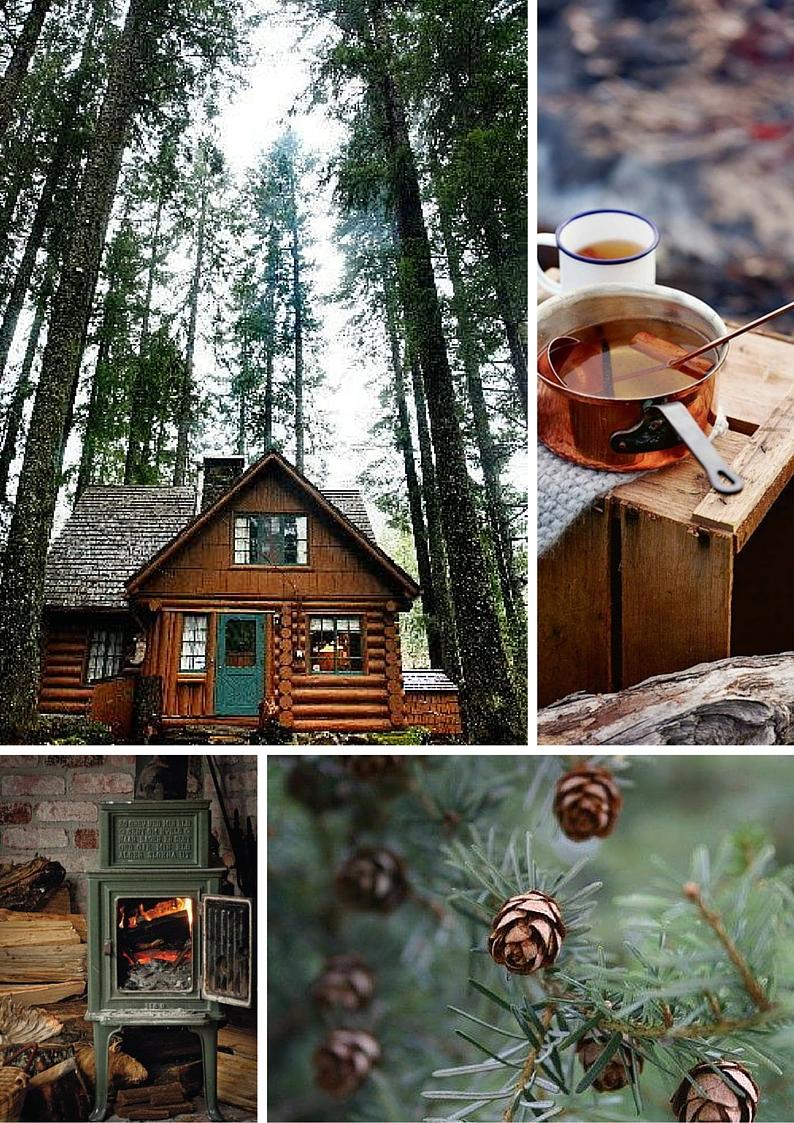 Chalet in legno nel bosco con serramenti in legno verde scuro e stufa ...