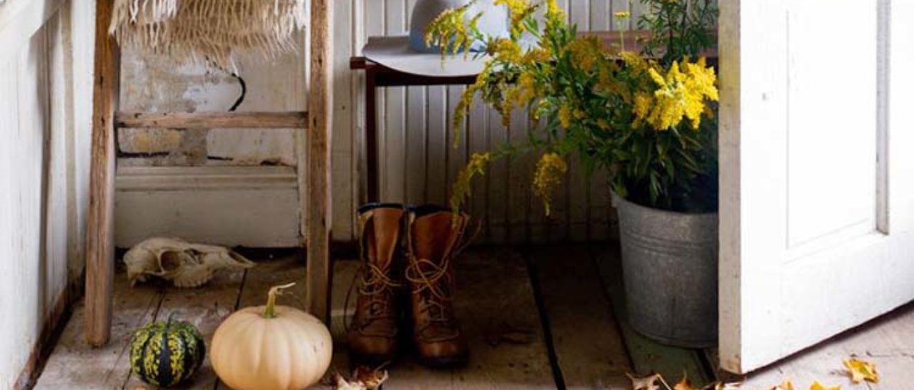 Cottage con ambientazione autunnale con pavimento in legno e scala a pioli in legnoin autunno