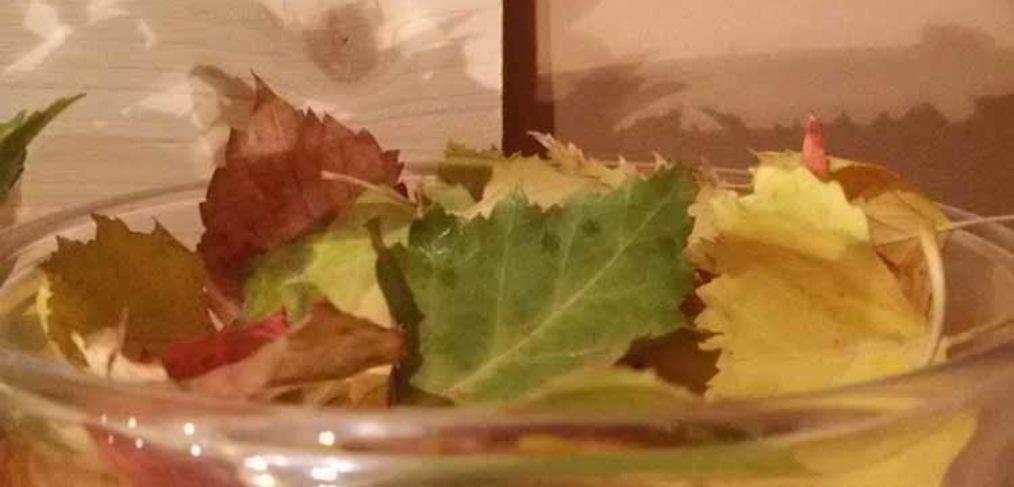 Vaso con foglie autunnali