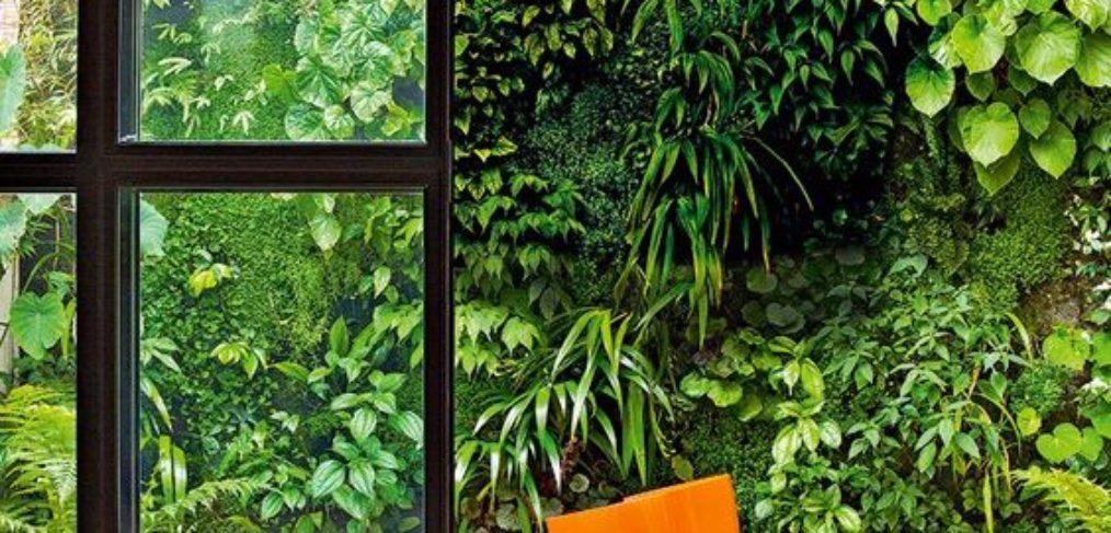 parete verde verticale muro esterno