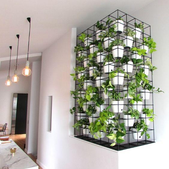 35 Indoor Garden Ideas To Green Your Home: Verde A Tutt'altezza Dentro E Fuori Casa