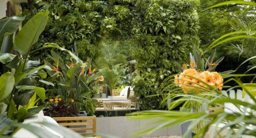 scorcio giardino con parete verde verticale